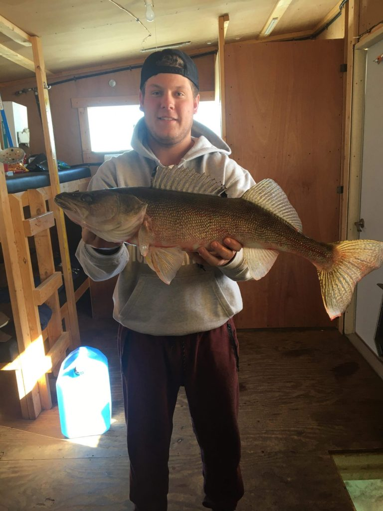 Jesse Siskar 27.5 inches